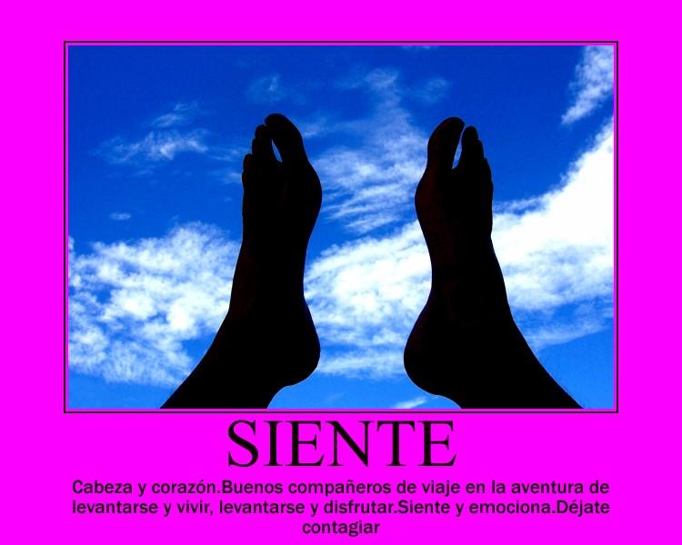 15.- SIENTE
