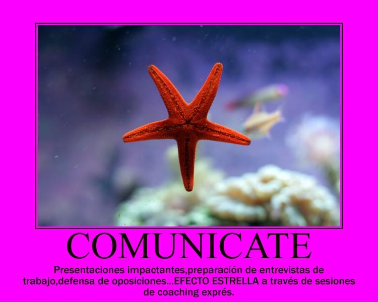 9.- COMUNICATE